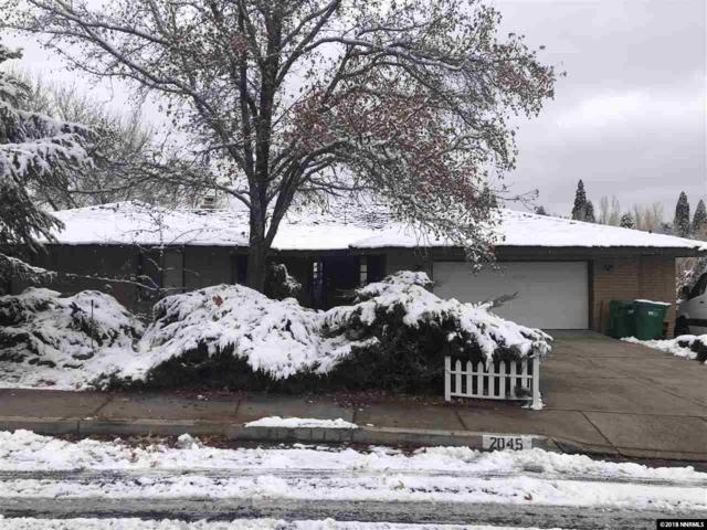 2045 Lakeridge Drive, Reno, NV 89509 (MLS #180017791) :: Vaulet Group Real Estate
