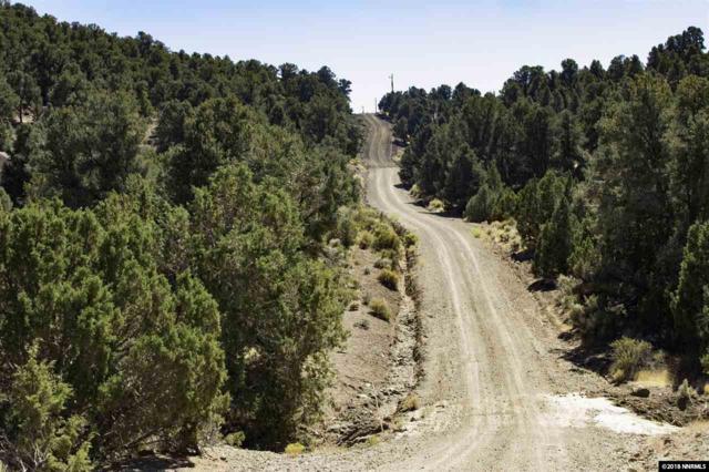 2150 Castle Peak Road, Reno, NV 89521 (MLS #180017793) :: Mike and Alena Smith | RE/MAX Realty Affiliates Reno