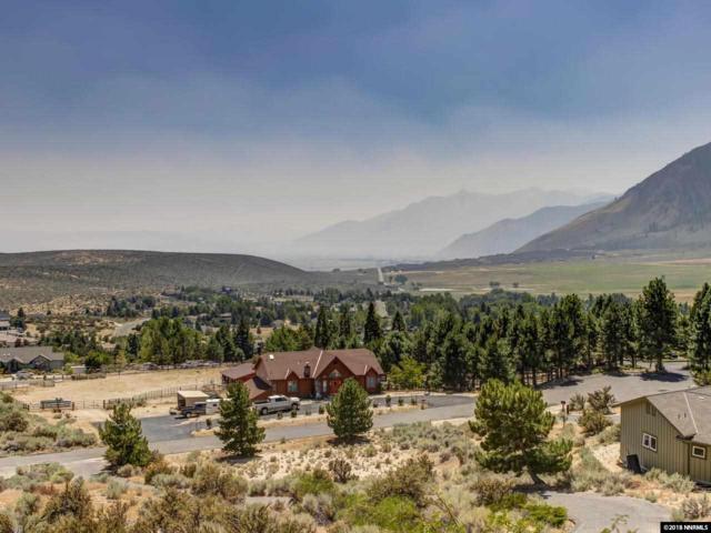 3549 Mont Blanc, Carson City, NV 89705 (MLS #180017826) :: Chase International Real Estate
