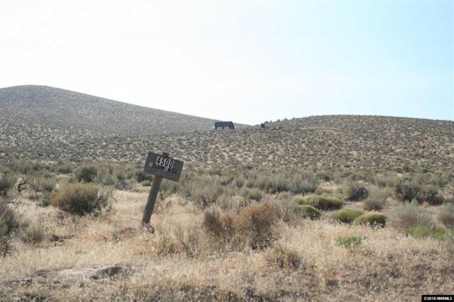 4500 Wild Horse Road, Reno, NV 89510 (MLS #180018314) :: NVGemme Real Estate
