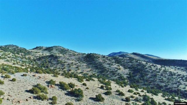 000 Curnow Canyon, Reno, NV 89510 (MLS #180018460) :: NVGemme Real Estate
