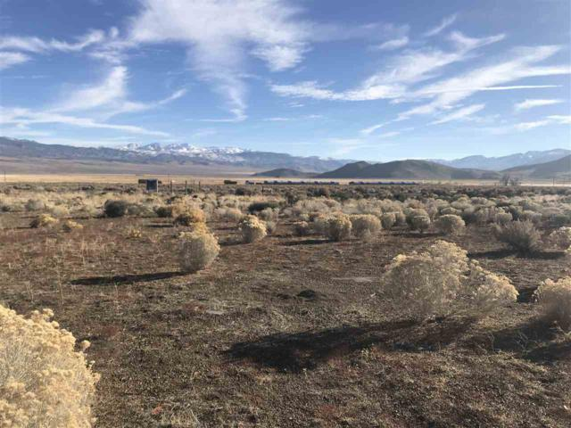 3907 Carter, Wellington, NV 89444 (MLS #190000129) :: Harcourts NV1