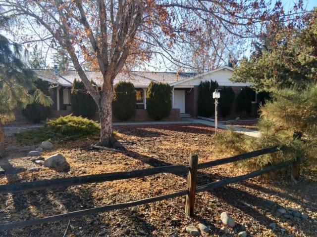 13510 South Hills Dr, Reno, NV 89511 (MLS #190000166) :: NVGemme Real Estate