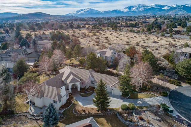 14250 Bandolier Court, Reno, NV 89511 (MLS #190000206) :: Mike and Alena Smith   RE/MAX Realty Affiliates Reno