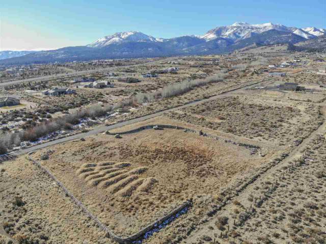 0 Mountain Ranch, Reno, NV 89511 (MLS #190000235) :: Mike and Alena Smith   RE/MAX Realty Affiliates Reno