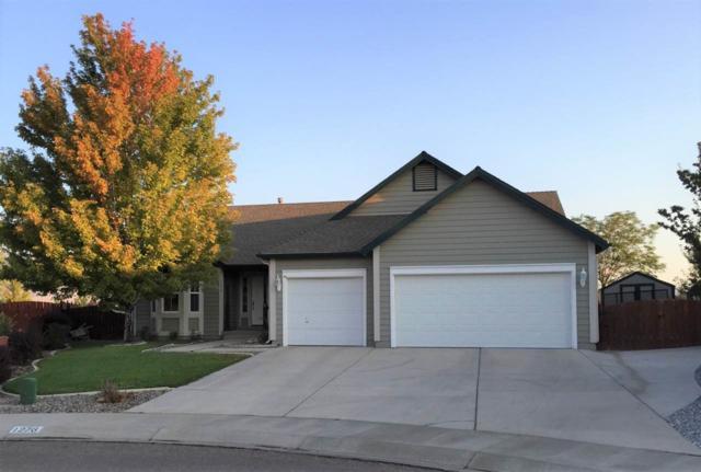 1276 Santa Fe Ct, Minden, NV 89423 (MLS #190000290) :: NVGemme Real Estate