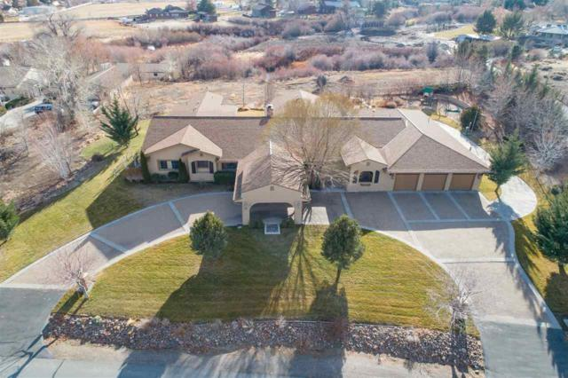 3520 Frost, Reno, NV 89511 (MLS #190000333) :: The Mike Wood Team