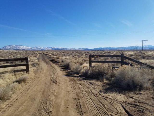 1825 Sunrise Pass, Minden, NV 89423 (MLS #190000383) :: NVGemme Real Estate