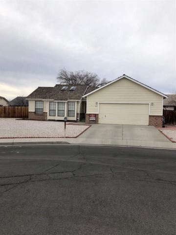 441 Michael, Fallon, NV 89406 (MLS #190000410) :: Chase International Real Estate