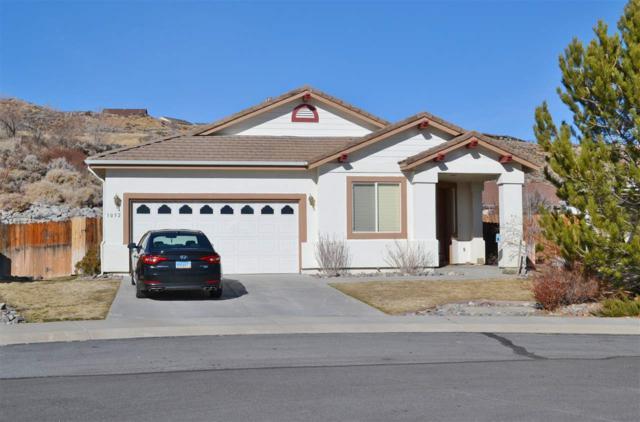 1052 Chip Ct, Minden, NV 89410 (MLS #190000434) :: NVGemme Real Estate