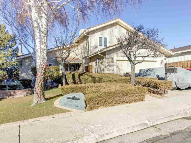 3925 Skyline Blvd, Reno, NV 89509 (MLS #190000494) :: Mike and Alena Smith | RE/MAX Realty Affiliates Reno
