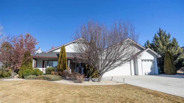 1512 Brandi Rose Way, Minden, NV 89423 (MLS #190000538) :: NVGemme Real Estate