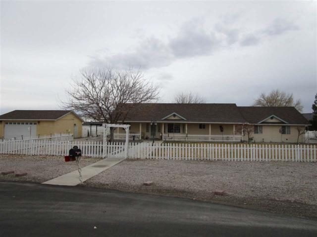 1250 Venturacci, Fallon, NV 89406 (MLS #190000561) :: Chase International Real Estate