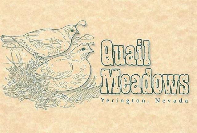 212 Quail Run Drive, Yerington, NV 89447 (MLS #190000631) :: NVGemme Real Estate