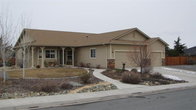 430 Hay Bale Drive, Sparks, NV 89441 (MLS #190000664) :: The Mike Wood Team