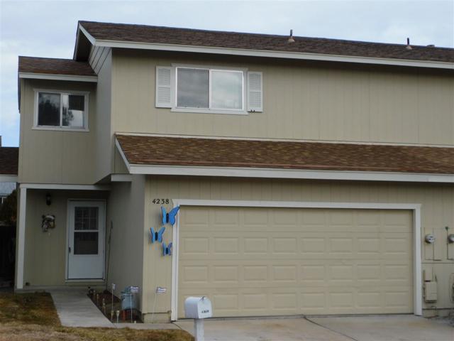 4238 Mulligan, Carson City, NV 89701 (MLS #190000668) :: Marshall Realty