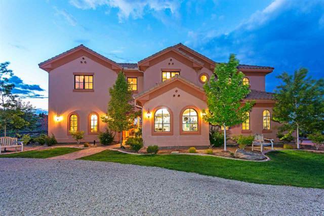 2435 Whites Creek Lane, Reno, NV 89511 (MLS #190000671) :: Mike and Alena Smith   RE/MAX Realty Affiliates Reno