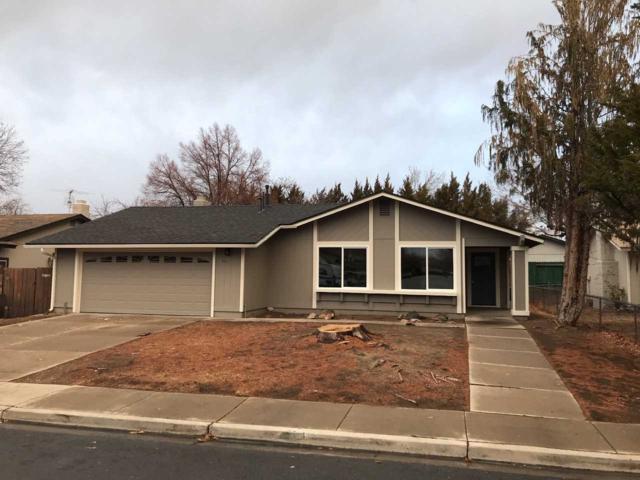 1030 Robbie Way, Sparks, NV 89434 (MLS #190000718) :: NVGemme Real Estate