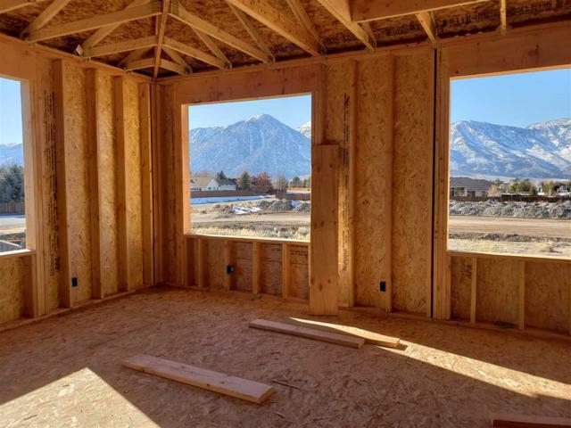 1024 Silveranch, Gardnerville, NV 89410 (MLS #190000773) :: NVGemme Real Estate