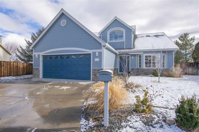 2163 Court Side Circle, Carson City, NV 89703 (MLS #190000851) :: The Mike Wood Team