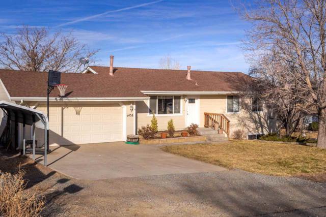 1438 Evening Star Lane, Gardnerville, NV 89460 (MLS #190000871) :: NVGemme Real Estate