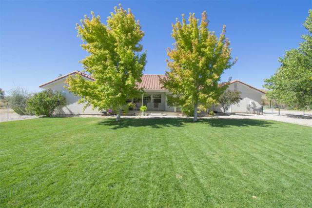 5141 Solias Rd, Fallon, NV 89406 (MLS #190000979) :: The Mike Wood Team