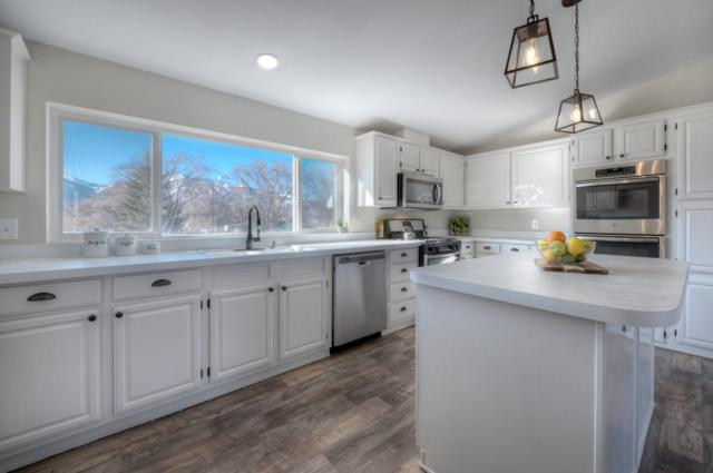 3510 Lyon, Washoe Valley, NV 89704 (MLS #190000985) :: The Mike Wood Team