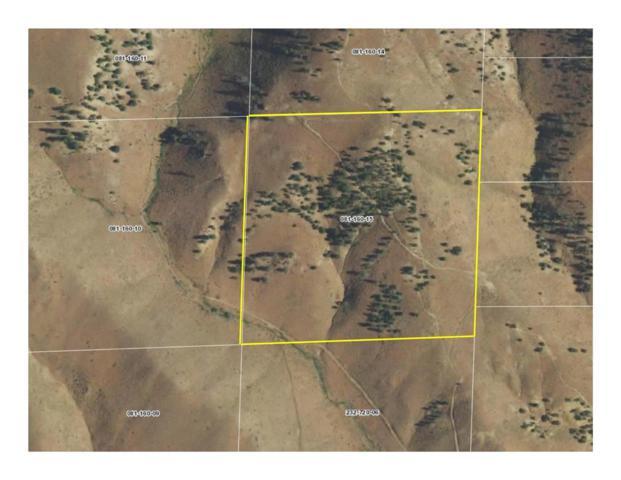 58 Peavine Creek, Reno, NV 89523 (MLS #190001043) :: Theresa Nelson Real Estate