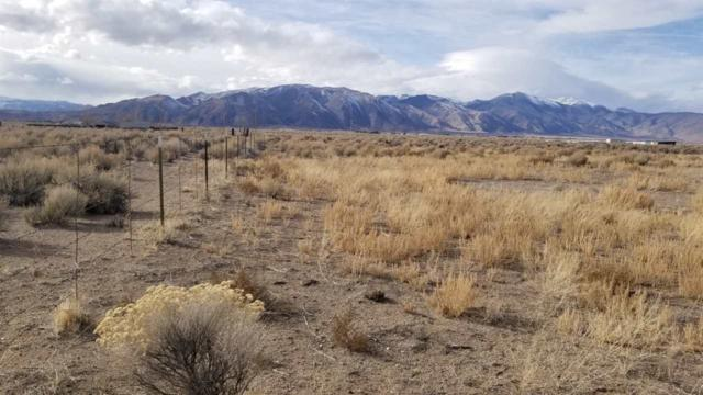 11 Hudson Aurora Rd, Smith, NV 89430 (MLS #190001101) :: Chase International Real Estate