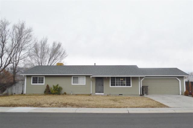 703 Empire Rd, Dayton, NV 89403 (MLS #190001136) :: The Mike Wood Team