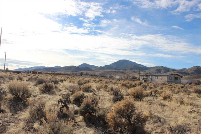 Lot 9 Sutro Springs Road, Dayton, NV 89403 (MLS #190001165) :: Chase International Real Estate