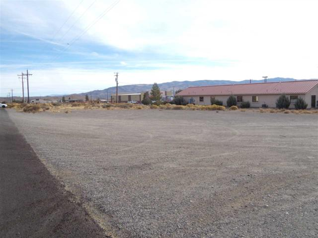 1485 Albite, Wellington, NV 89410 (MLS #190001197) :: Harcourts NV1