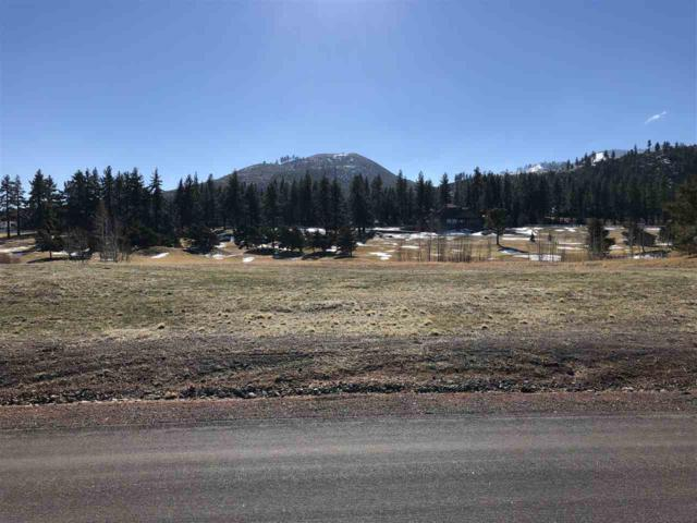 41 Lightning W Rd, Washoe Valley, NV 89704 (MLS #190001396) :: The Mike Wood Team