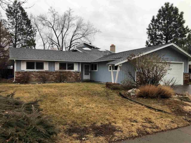 1110 Johnson Pl, Reno, NV 89509 (MLS #190001417) :: Chase International Real Estate