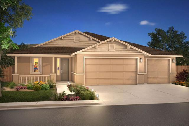 1212 Lasso Lane, Gardnerville, NV 89410 (MLS #190001491) :: Vaulet Group Real Estate