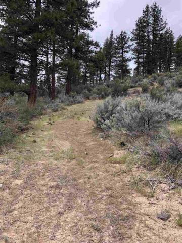 0 Old Clear Creek Road, Carson City, NV 89705 (MLS #190001515) :: Chase International Real Estate