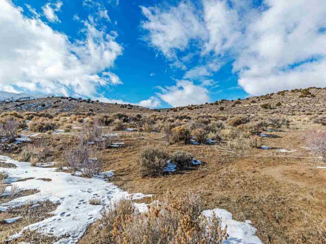 205 Antelope Valley Ct, Reno, NV 89506 (MLS #190001569) :: Marshall Realty