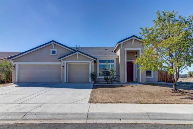 405 Sapphire Way, Fallon, NV 89406 (MLS #190001669) :: Theresa Nelson Real Estate