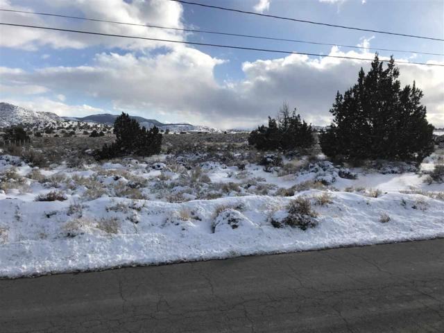 Cash Drive, Moundhouse, NV 89706 (MLS #190001734) :: Chase International Real Estate