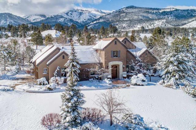 16956 Rue Du Parc Reno, Reno, NV 89511 (MLS #190001752) :: Chase International Real Estate