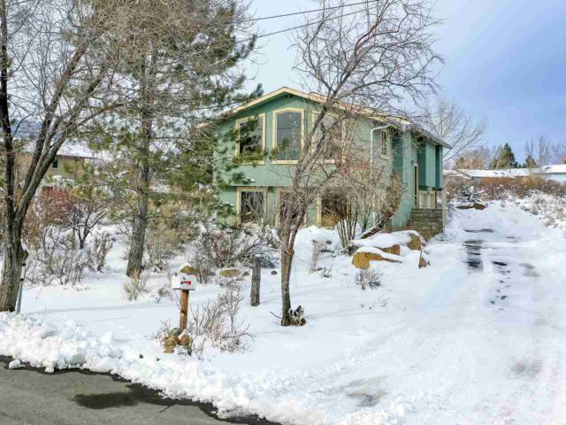 5235 Cedarwood Drive, Reno, NV 89511 (MLS #190001827) :: Marshall Realty