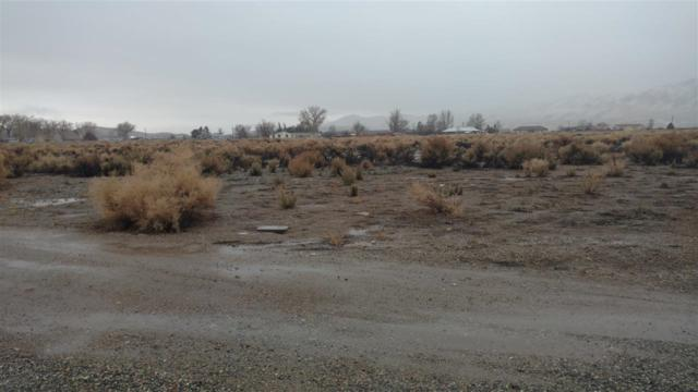 7 Pine Valley Ct., Yerington, NV 89447 (MLS #190001869) :: Joshua Fink Group