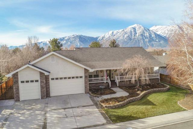 937 Wintergreen Drive, Gardnerville, NV 89460 (MLS #190001879) :: Chase International Real Estate