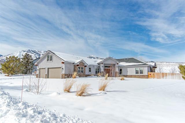 310 Little Washoe, Washoe Valley, NV 89704 (MLS #190001954) :: The Mike Wood Team