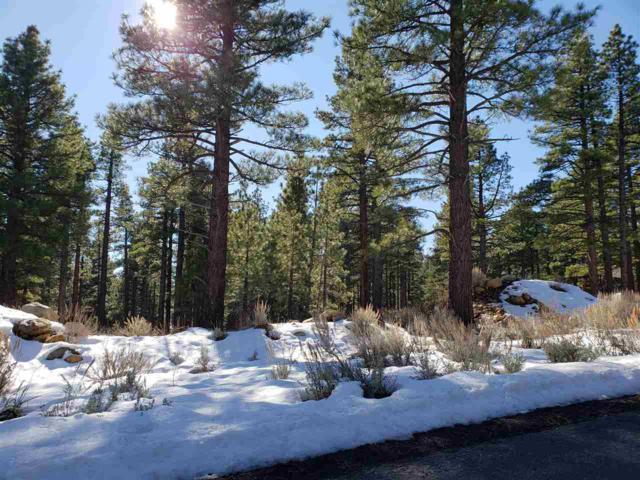 850 Piney Creek Rd, Reno, NV 89511 (MLS #190001977) :: Chase International Real Estate
