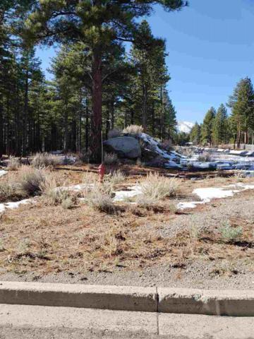 880 Piney Creek Rd, Reno, NV 89511 (MLS #190001978) :: Marshall Realty