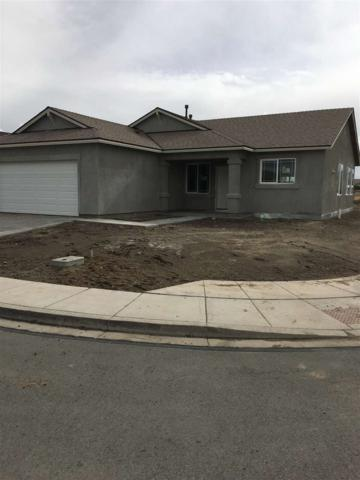 234 Red Oak Dr., Fernley, NV 89408 (MLS #190001992) :: Chase International Real Estate