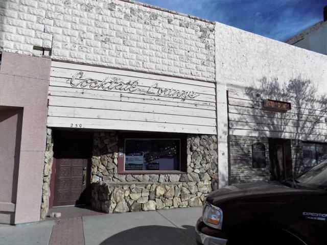 250 Main St, Lovelock, NV 89419 (MLS #190002078) :: Theresa Nelson Real Estate