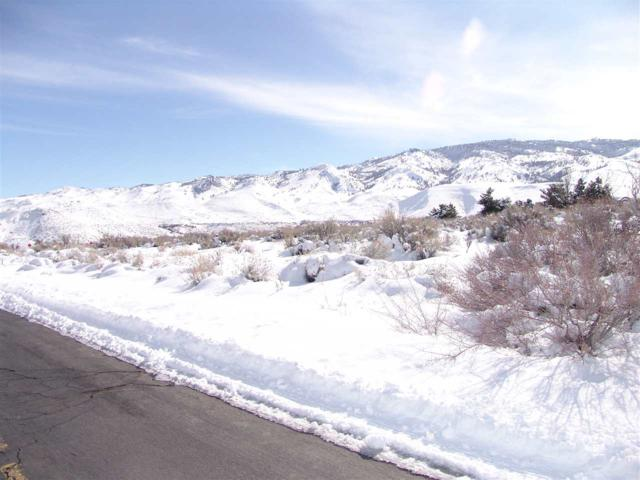 0 Mule Deer Court, Reno, NV 89523 (MLS #190002106) :: Theresa Nelson Real Estate