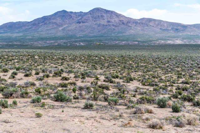 165 Mt. Grant, Smith, NV 89430 (MLS #190002327) :: Harcourts NV1